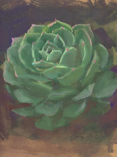 Paint Drip #36 Succulent