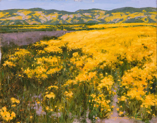 11x14_20170428_CarrizoPlain_SergioLopez_Riot_of_Gold forweb.jpg