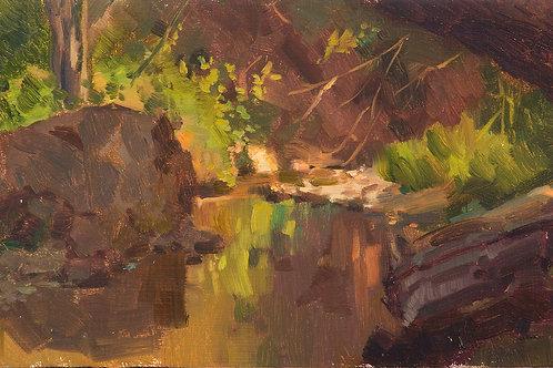 Sonoma Creek, Sugarloaf Ridge - Oil Painting (Linen On Panel)