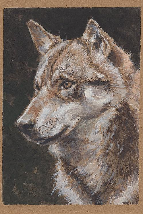 Paint Drip #161 Wolf Portrait