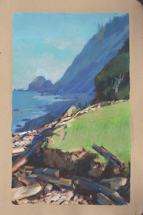 Paint Drip #164 Arch Cape Oregon 2