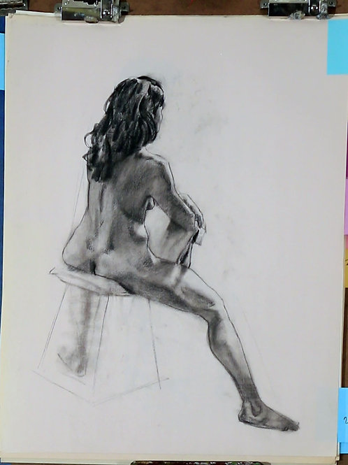 Collection of Charcoal Drawings, #9
