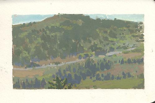 Paint Drip #89 Badger Hill Vista