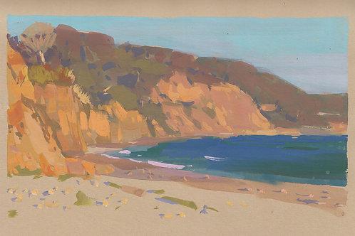 Paint Drip #116 Cove Beach, Ano Nuevo State Park