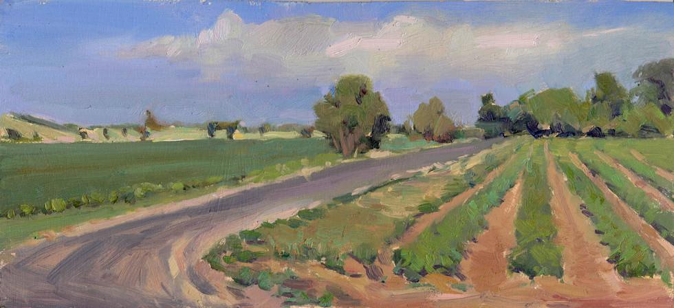 2012051001-Road29Winters.jpg