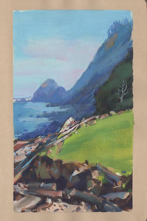 Paint Drip #163 Arch Cape Oregon