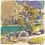 "Thumbnail: ""Ediza Lake Tree"" Gouache on paper."