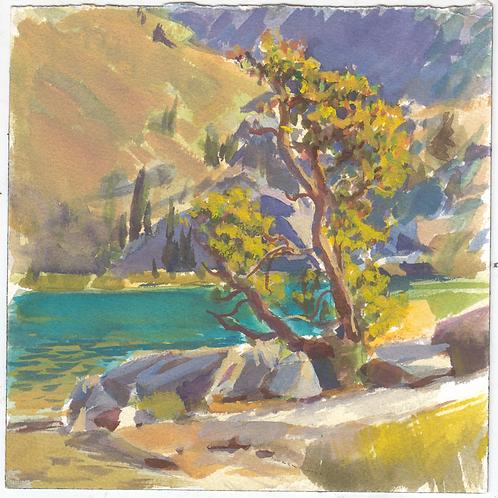"""Ediza Lake Tree"" Gouache on paper."