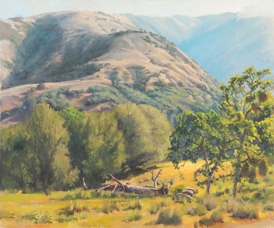 20x24 Morning At Tejon Ranch copy.jpg