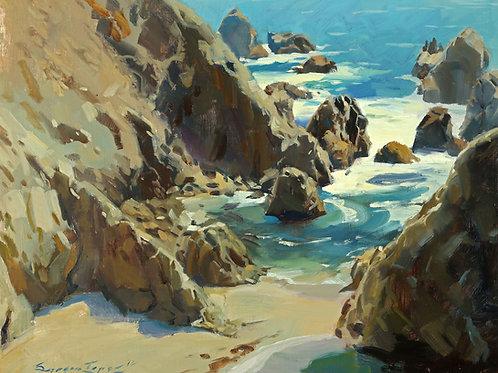 """""""A Rare Day In Bodega Bay"""" 10x13 in. Print"""