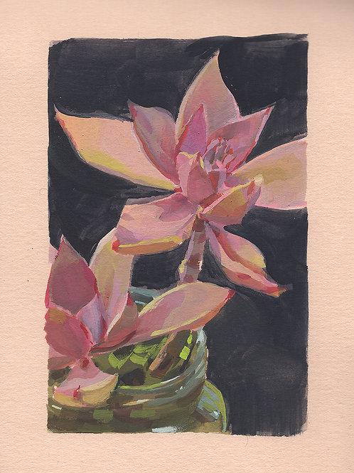 Paint Drip #175 Pink Succulent