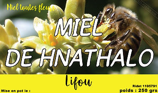 miel-de-hnathalo-abeille-noire.jpg