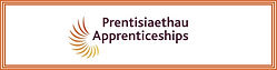 Apprenticeships-Logo-Bi1-1.jpg