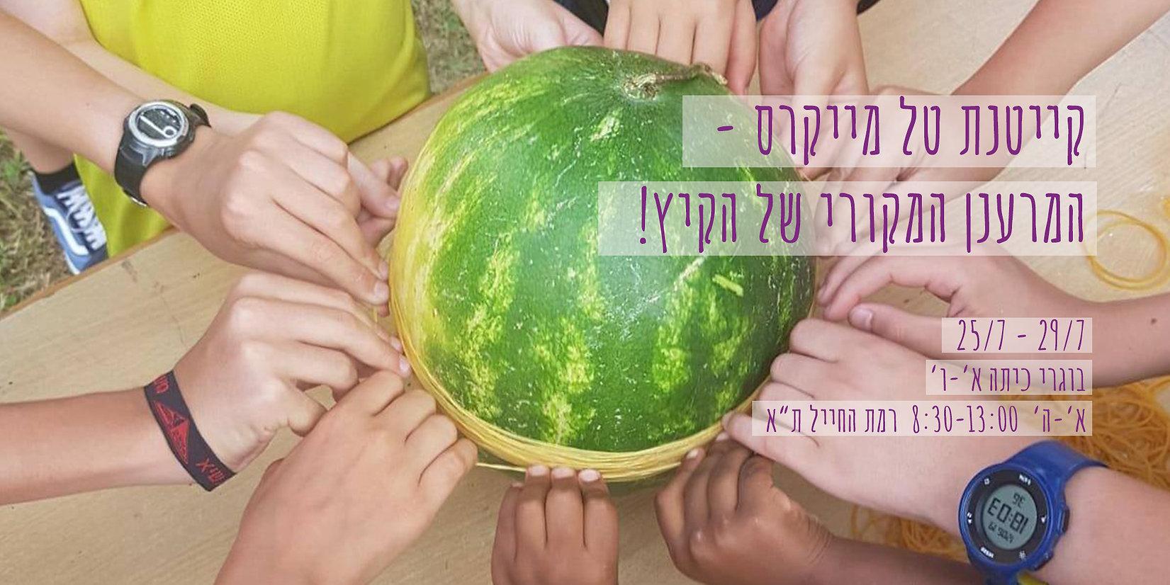 watermelon 25.7.jpg