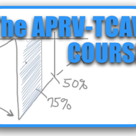 Flipping the Vent: The APRV-TCAV Course