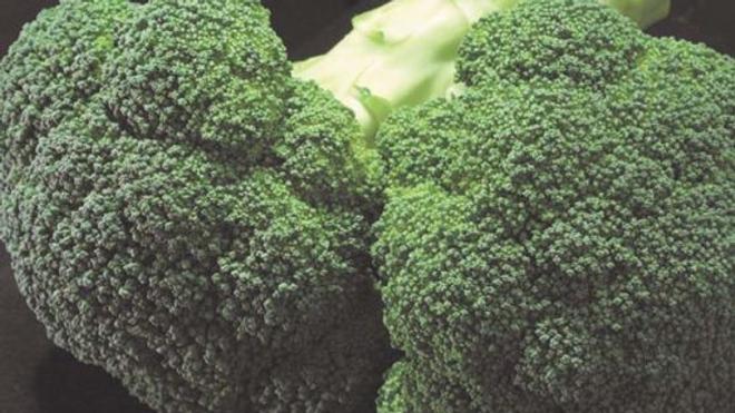 Broccoli - Gypsy