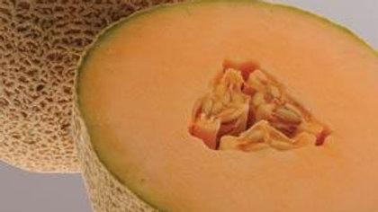 Melon (Canteloupe) - Ball 2076