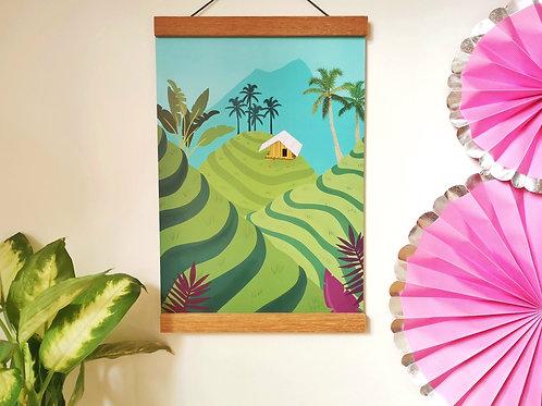 Padi Fields of Indonesia Print