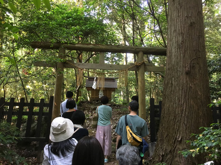 彌彦神社巡り 神社が語る日本人の心 古事記体現を求めて