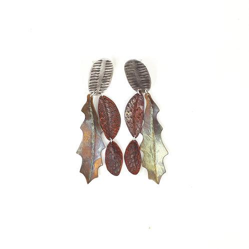 Hakea leaf, eucalypt & beetle wings