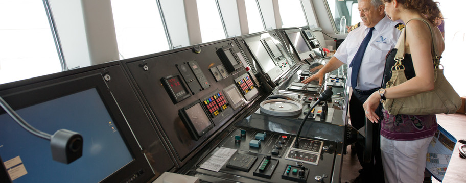 Voyager-clients on bridge.jpg