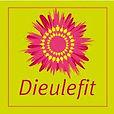 logo-Dieulefit.jpg