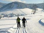 ski-de-fond.JPG