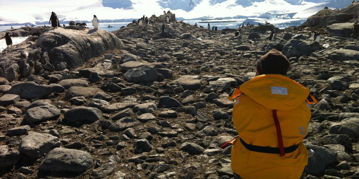 photo antarctique 4
