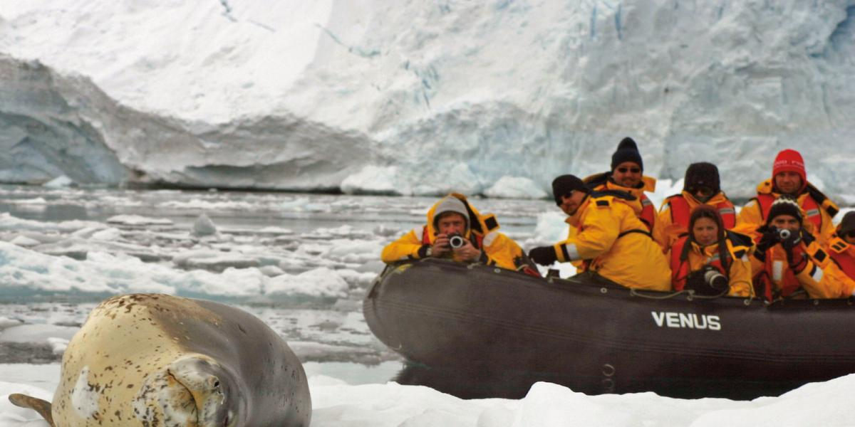 photo antarctique 11