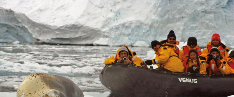 photo antarctique 11