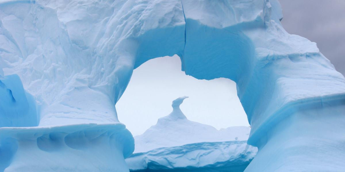 photo antarctique 19