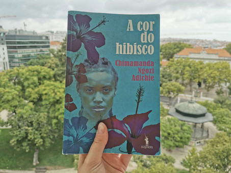 """Crítica ao livro """"A cor do hibisco"""", de Chimamanda Ngozie Adichie"""