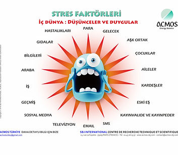 Stress Factors - Turkish - Texts - 1811