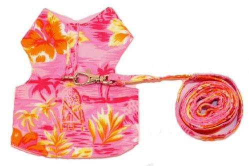 Print Harness & Leash Set