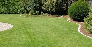 Rasen Kanten schneiden