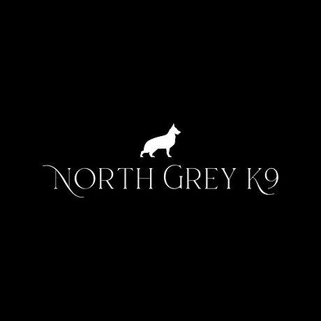 North grey k9.jpg