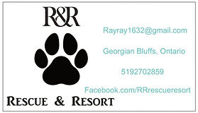 rescue business card.jpg
