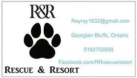 rescue business card.jpg