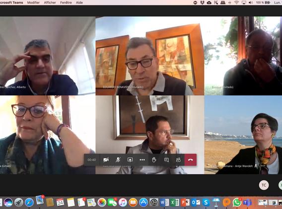 EuroCámaras reunión virtual