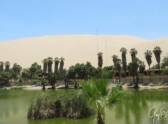 Oasis de Huacachina à Ica