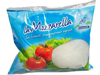 MOZZARELLA BUSTA GR 125