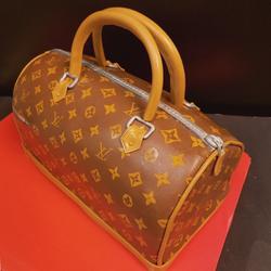 Louis Vuitton Purse Bag