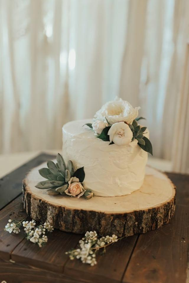 Small Succulent Cutting Cake