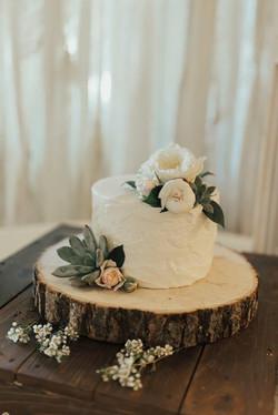 Small Succulent Cutting Cake