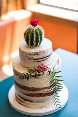 Small Rustic Cactus Cake
