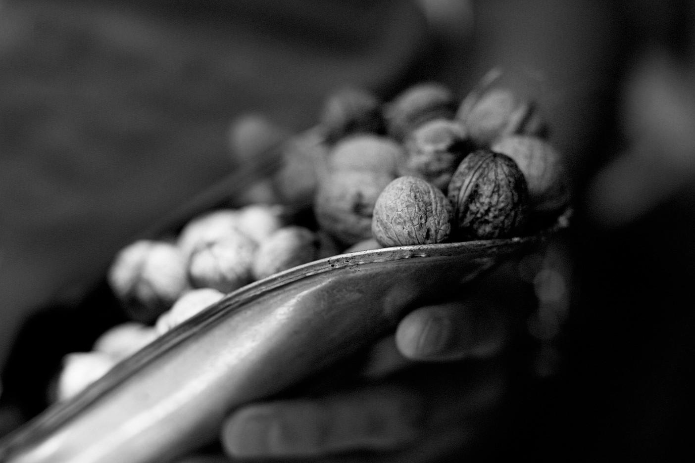 Nuts-001273.jpg