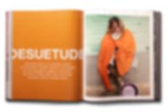 DesuetudeSpreadBook.jpg