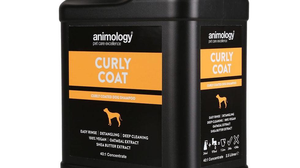 Animology Curly Coat Shampoo  2.5 litre