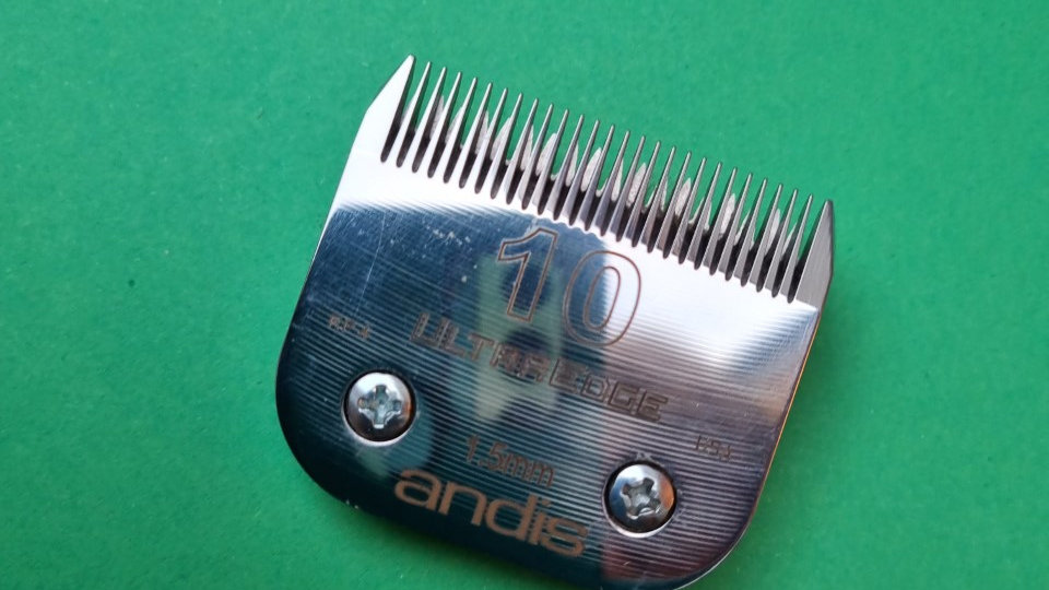 Andis #10 blade