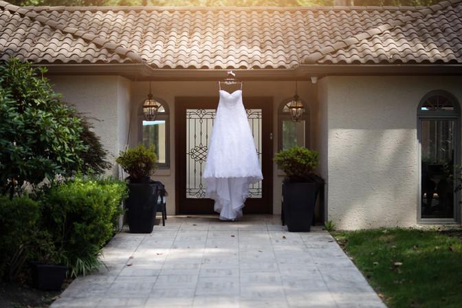 Teeonna's Wedding Dress